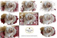 Decorative Photoshop Masks Set / Clipping Masks Product Image 1