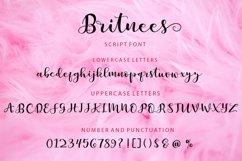 Britnees Script Product Image 6