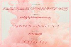 Milania Script Product Image 6