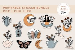 Stickers Bundle PNG | Printable Flower Stickers for Cricut Product Image 1