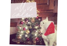 Christmas Words and Phrases - Overlay Font Product Image 2