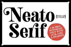 Neato Serif Font Family Product Image 1