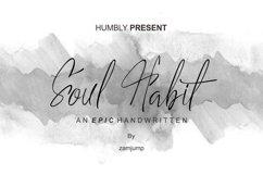 Soul Habit Product Image 1