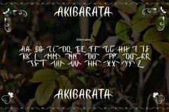 AKIBARATA Product Image 4