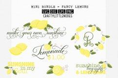 Lemons & Sunshine - Svg Bundle Product Image 1