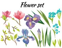 Watercolor flowers, clipart. Spring flowers Product Image 2