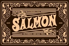 Salmon   Victorian Grunge Font Product Image 1