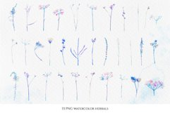 Watercolor floral design collection, herbal and ice Product Image 2