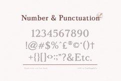 Morgen - Handwritten Serif Font Product Image 6