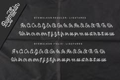 Web Font - Byemalkan - Two Styles Product Image 3