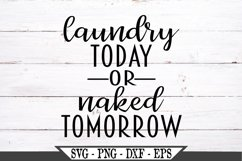 Laundry Today Or Naked Tomorrow SVG Product Image 1