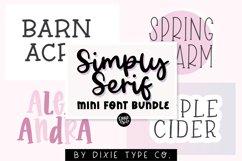 MINI FONT BUNDLE - Simply Serif Font Bundle Product Image 1
