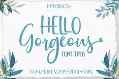 Gorgeous Script Font Trio Product Image 1