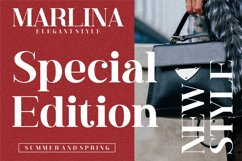 Hustle Actlife - Beautiful Serif Font Product Image 2