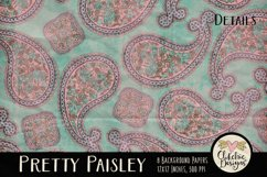 Paisley Background Textures - Shabby Pretty Paisley Papers Product Image 5