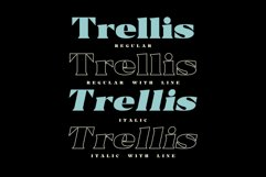 Trellis -Typeface Bold Serif Product Image 5