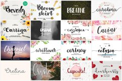 UPDATED 230 INSANE FONT SALE Product Image 9