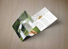 Wedding Planner Square Trifold Brochure Product Image 3