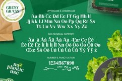 Web Font Felman Font Product Image 5