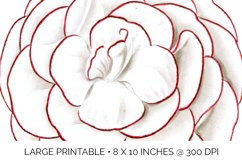 Carnation Clipart Flower Product Image 6
