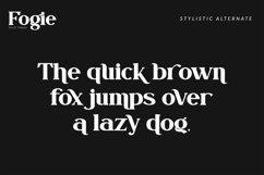 Fogie Modern Serif Font Product Image 6