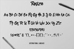 Resize Typeface Product Image 4
