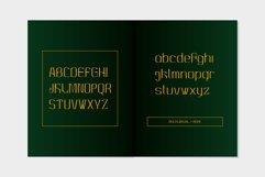 MBF Alligra Product Image 6