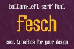 Fesch - bottom-left slab serif font Product Image 1