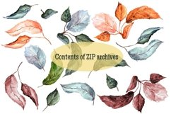 Leaves. Watercolor clipart Product Image 2