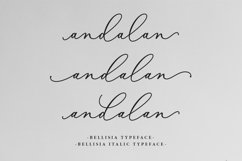 Bellisia Script Product Image 2