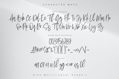 Le Barche - Chic Handwritten Font Product Image 5