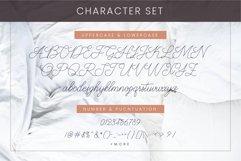 Abbassy Script // Monoline Font Product Image 6