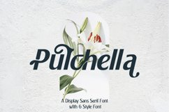 Pulchella Family Font   6 Style Product Image 1