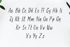 Aharon Handwritten Brush Font Product Image 2