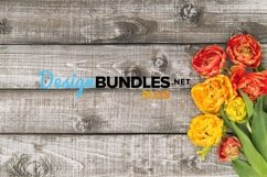 Spring tulip flowers on rustic wooden background stock photo Product Image 1
