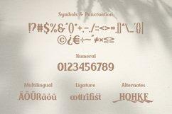 Brickson - Elegant Modern Serif Product Image 6