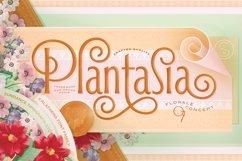 Alathena Font Family Product Image 4