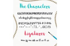 Melony Script, Hand Drawn Brush Font Product Image 2