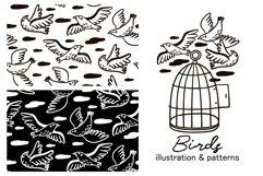 BIRDS illustration & patterns Product Image 1
