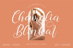 Chamelia Blinkar - Beautiful Script Font Product Image 1
