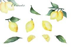 Watercolor Lemon Product Image 2