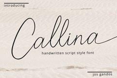 Callina Handwritten Font Product Image 1