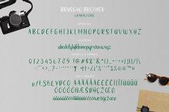 brushgyo typeface Product Image 5