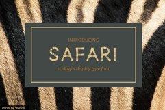 Safari Playful Display Font Typeface Product Image 1