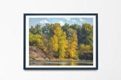Autumn trees - Wall Art - Digital Print - Home Decor Product Image 2