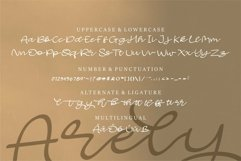 Web Font Arely - Beauty Script Font Product Image 6
