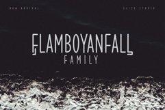 Flamboyanfall Family Product Image 1
