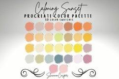 Procreate Color Palette Bundle Product Image 6