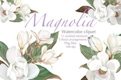 Magnolia Flower, Watercolor Floral clipart Product Image 4