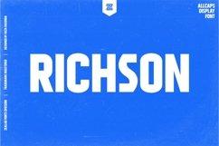 RICHSON - MULTIPURPOSE URBAN DISPLAY FONT Product Image 1